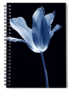 To The Light Tulip Flower In Blue Spiral Notebook
