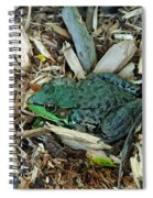 Toad Master Spiral Notebook