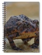Toad Takes A Stance Spiral Notebook