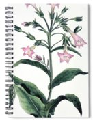 Tobacco Nicotiana Tabacum Spiral Notebook