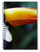 Toco Toucan Brazil Spiral Notebook