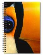 Toco Toucan Face Spiral Notebook