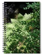 Tod Creek  Spiral Notebook