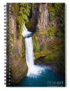 Toketee Falls Spiral Notebook