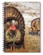 Tom Turkey And Hen Spiral Notebook