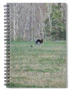 Tom Turkey Spiral Notebook