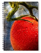 Tomato On A Vine Spiral Notebook
