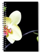 Tomorrow's Promises - No 1 Spiral Notebook