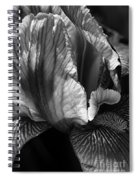 Tones Of Iris Spiral Notebook