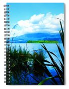 Tongariro National Park Oil On Canvas Spiral Notebook