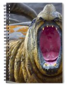 Tonsils And Trunks Spiral Notebook