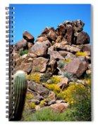 Tonto Saguaro Rocks 10189 Spiral Notebook