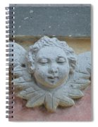 Too Fat To Fly Spiral Notebook
