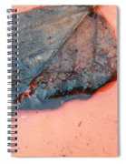 Too Late For Hydration Spiral Notebook
