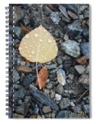 Too Little Too Late Spiral Notebook