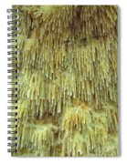 Toothed Fungi Macro Spiral Notebook