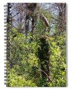 Top Of The Glades Spiral Notebook