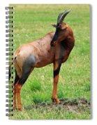 Topi Antelope On The Masai Mara Spiral Notebook
