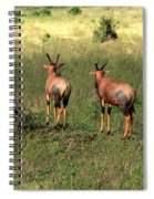 Topi Lookout On The Masai Mara Spiral Notebook