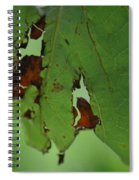 Torn Leaf Abstract Spiral Notebook