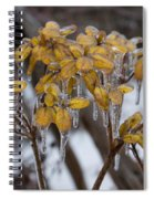 Toronto Ice Storm 2013 - My Garden In The Morning Spiral Notebook