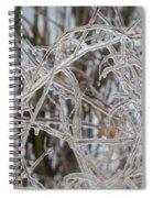 Toronto Ice Storm 2013 - Pale Frozen Grasses  Spiral Notebook