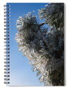 Toronto Ice Storm 2013 - Pine Needle Flowers In The Sky Spiral Notebook