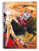 Toroscape 58 Spiral Notebook