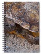 Tortoise By Nature Spiral Notebook