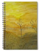 Touch Of Gold Spiral Notebook