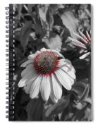 Touch Of Red Invite Spiral Notebook