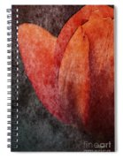 Touch Of Spring Spiral Notebook