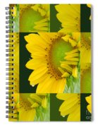 Touch Of Yellow  Spiral Notebook