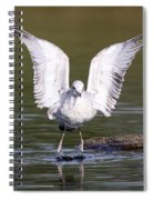 Touchdown  Spiral Notebook