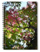 Touches Of Autumn  Spiral Notebook