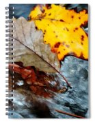 Touching In Time Spiral Notebook