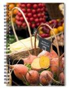 Touchstone Gold Spiral Notebook