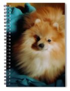 Touley Spiral Notebook