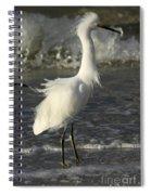 Tousled Egret Spiral Notebook