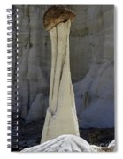 Tower Of Silence 1 Spiral Notebook