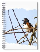 Towhee Singing On Top Of Mountain Spiral Notebook
