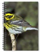Townsends Warbler Spiral Notebook