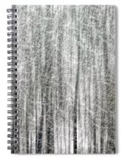 C And O Towpath Blizzard Spiral Notebook