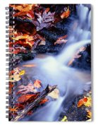 Traces Spiral Notebook