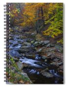 Tracking Color - Big Hunting Creek Catoctin Mountain Park Maryland Autumn Afternoon Spiral Notebook