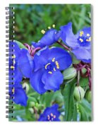 Tradescantia Blooming Spiral Notebook