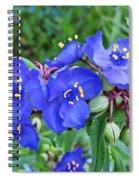 Tradescantia Blooming Spiral Notebook