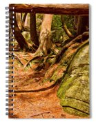 Trail In A Forest, Muskoka, Ontario Spiral Notebook