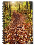 Trail In Fall Forest Spiral Notebook