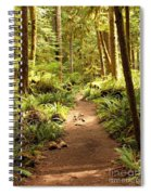 Trail Through The Rainforest Spiral Notebook